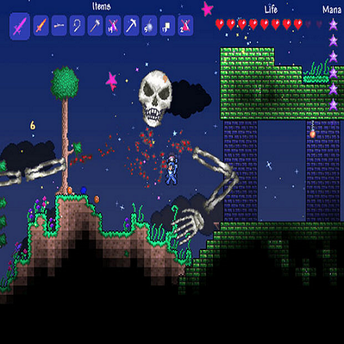 Terraria an adventurous video game for pc, multiplayer